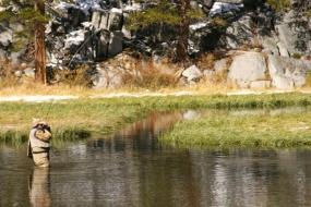 salmon fishing, steelhead  fishing, cda fishing guides, cda fishing, fall fishing, fishing vacations,