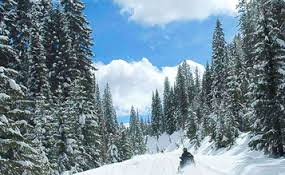 winteractivity, snowmobile, sledding, snow, winter fun,